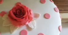 Gradient Cake - 8' - Chocolate2