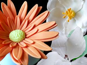 Project 8 - Flowers - Garden